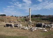 Selcuk_Artemis-tapinagi (4)