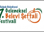 şeftali festivali a3 afiş 2015